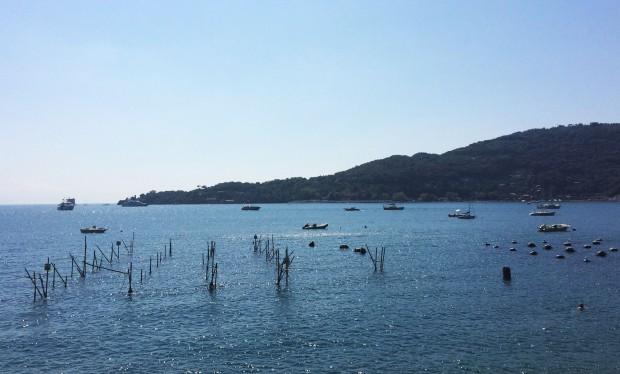 Cinque Portovenere fishing