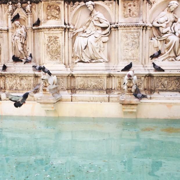 Siena fountain instagram